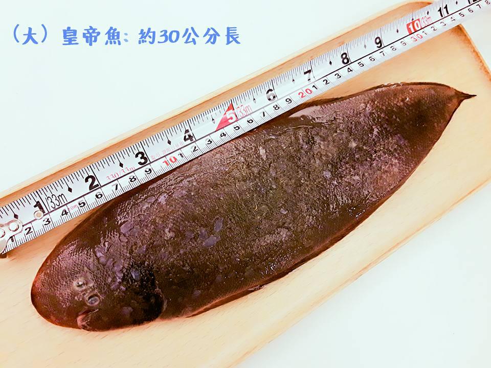 【雞籠好魚】野生皇帝魚500g*1包組 ★肉質細嫩無小刺,老少都適合★