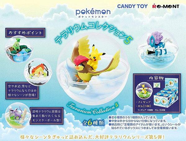 【寶可夢飼育球5】寶可夢 飼育生態球 擺飾 盒玩 第五代 Pokemon 日本正品 該該貝比日本精品