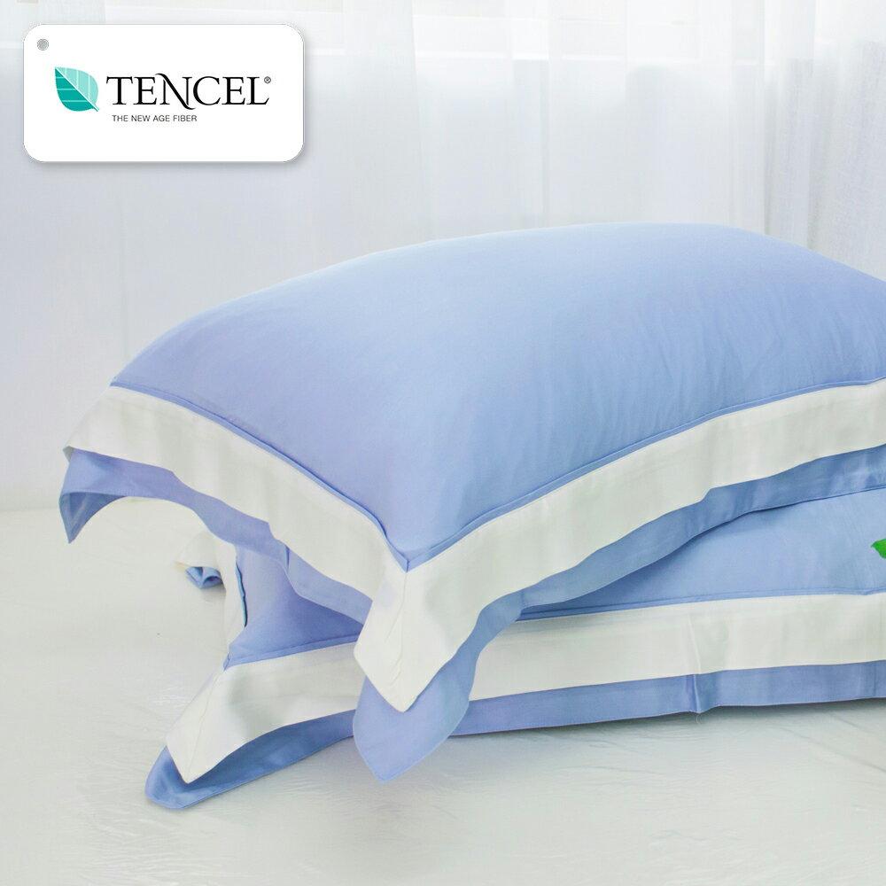 天絲枕套2入  100%天絲  tencel  天絲簡約風  多款  鴻宇 M2505