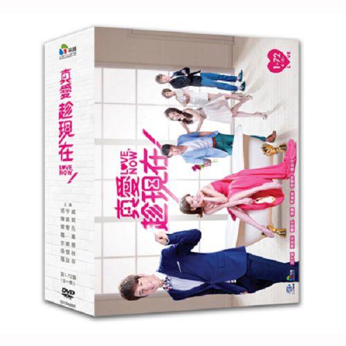 真愛趁現在DVD (全72集/11片裝) 胡宇威/陳庭妮