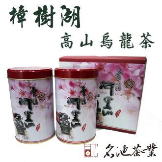 【名池茶業】阿里山樟樹湖春茶 飽滿圓潤 香氣十足1斤 (半斤罐X2入)