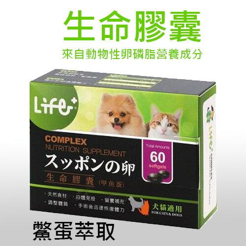 《虎揚科技》 Life生命膠囊 - 鱉丹[動物性卵磷脂] / 狗狗爆毛新配方第四代新!