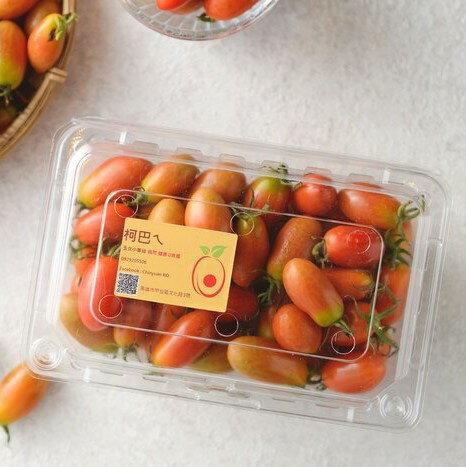 【團購10盒組】 玉女小番茄 600g/盒 X 10盒組 (一箱) ◆ 自然農法-絕無灑農藥及化肥