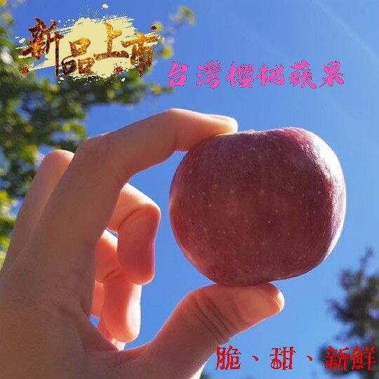 台灣福壽山-新品種 櫻桃蜜蘋果  4斤裝 限量特殊品種