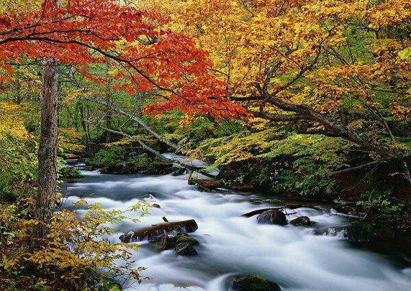 壁紙屋本舖:日本自然風景圖奧入瀨峽谷秋天風景MIT壁畫客廳門市壁畫8026