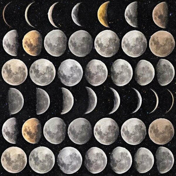 MindtheGapMoonPhasesWP20066壁紙「訂貨單位156cmx3m套(1套3張壁板)」月亮