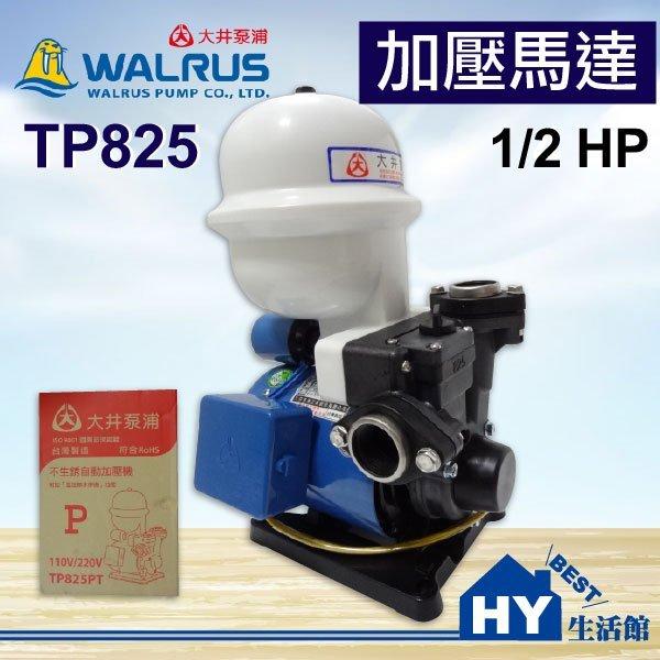大井泵浦 TP825 加壓馬達。1/2HP 不生銹 塑鋼抽水機 加壓機 抽水機。附無水斷電 另售 TP820