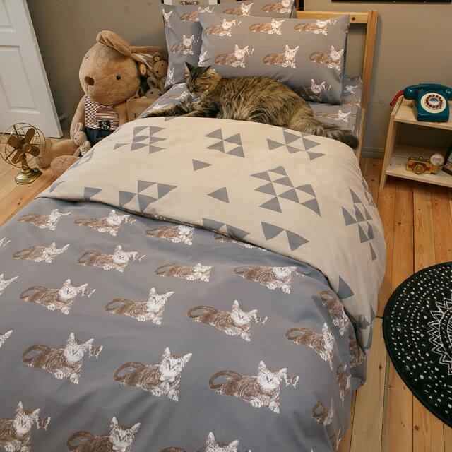 Iron cat 鐵灰小貓【床包鐵灰小貓】單人/雙人熱賣組  舒適磨毛布 台灣製造 1
