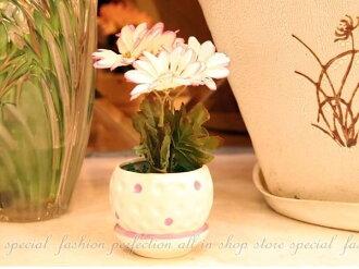 仿真陶瓷盆栽 法國鄉村風 陶瓷花器 迷你盆栽裝飾 居家佈置~不挑【GL250】◎123便利屋◎