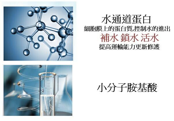 修護霜(50ml/瓶)水光逆齡【美光生醫】Medgene