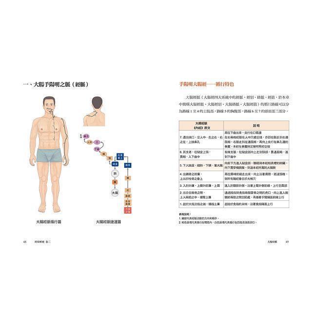 經絡解密卷二:強健體魄、延續生命的關鍵----大腸經+胃經 8