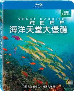 海洋天堂大堡礁BD