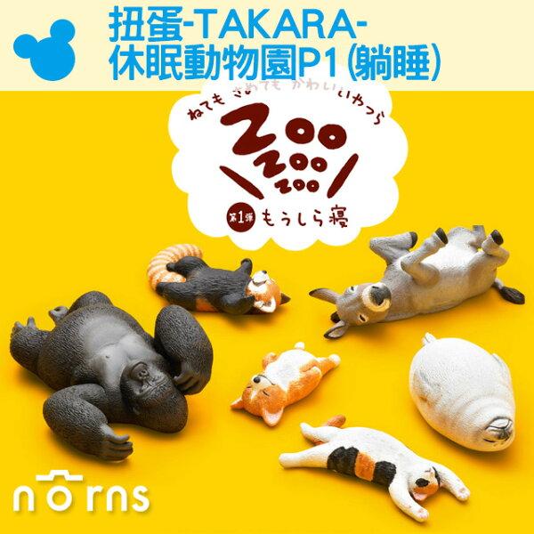 NORNS【扭蛋-TAKARA-休眠動物園P1(躺睡)】柯基驢子貓公仔盒玩轉蛋隨機出貨