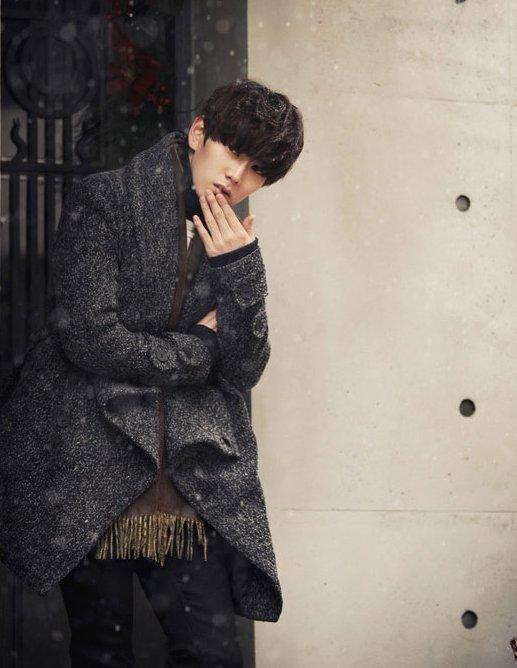 韓國系 黑白小細紋 翻蓋 翻領大衣 綁帶大衣 大衣 出清 下架