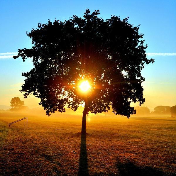 太陽光風景畫壁畫訂製壁畫e20408