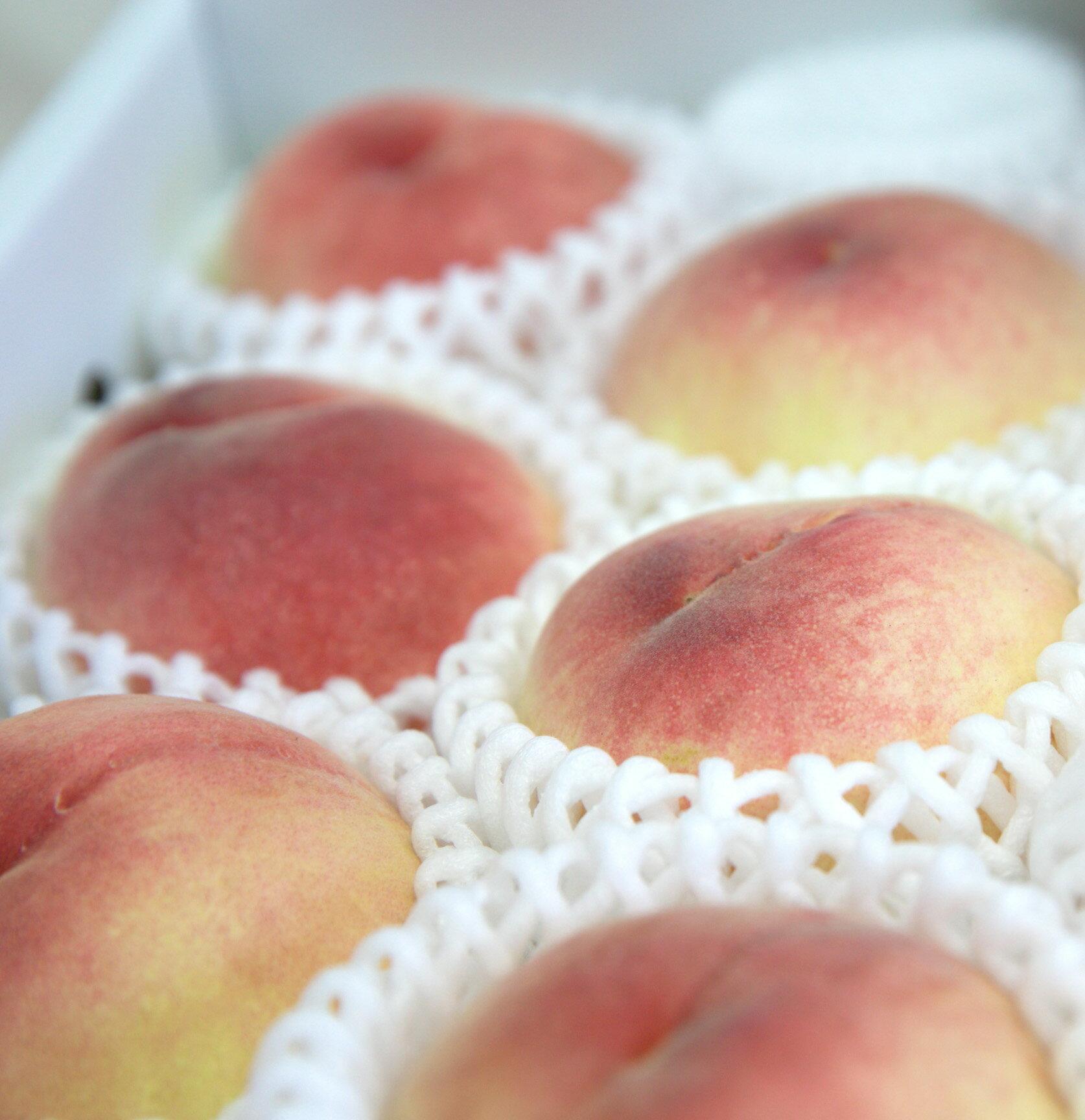 日本山梨溫室水蜜桃 / 6顆裝 / 1KG / 免運