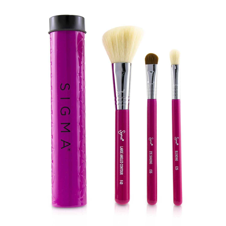 Sigma Beauty - 基礎旅行刷具3件組(含刷具罐)Essential Trio Brush Set