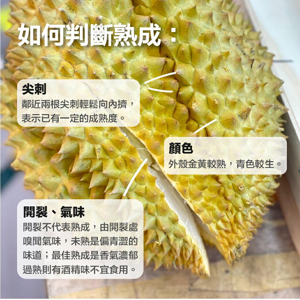 (免運)【綠之果物】頂級鮮採金枕頭榴槤 3-4入 非冷凍果