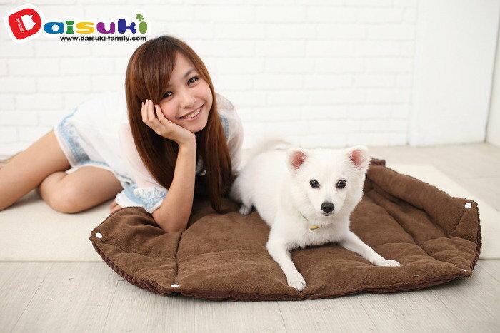 Daisuki舒適柔軟兩用床BP4-003 MC-咖啡色