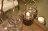 Upptäck Deco 農莊燭台 - 全三個尺寸【7OCEANS七海休閒傢俱】 3
