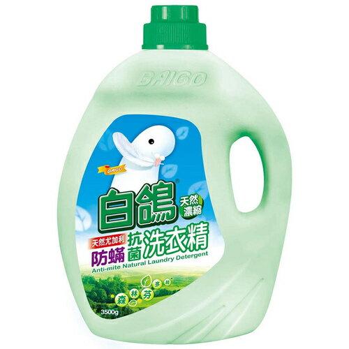 BAIGO 白鴿 防蟎抗菌 天然尤加利濃縮洗衣精 3500g