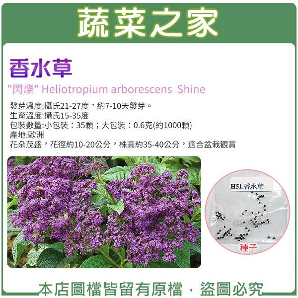 【蔬菜之家】香水草種子(共2種規格可選)