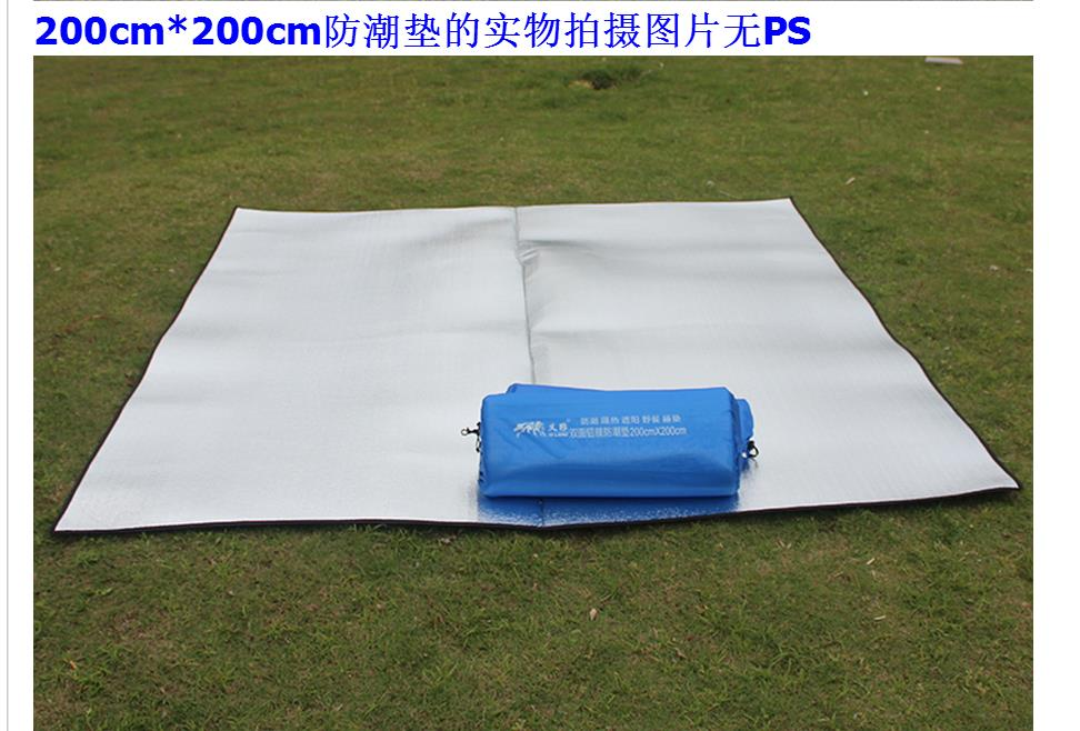 ANA 野餐 防潮地墊200*200cm 附收納袋