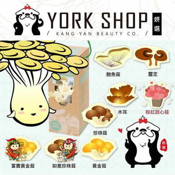 【姍伶】Just good就是菇 DIY可食用 辦公室種香菇太空包養菇盒 (鮑魚菇/黃金菇/黑木耳/珍珠菇