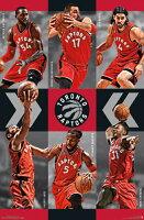 Toronto Raptors - Team 15 Laminated Poster Print (22 x 34)