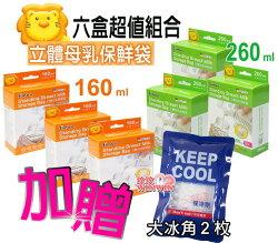小獅王辛巴立體母乳保鮮袋S.9933-160ML*2盒+S.9932-260ML*4盒,獨家加贈冰角2枚