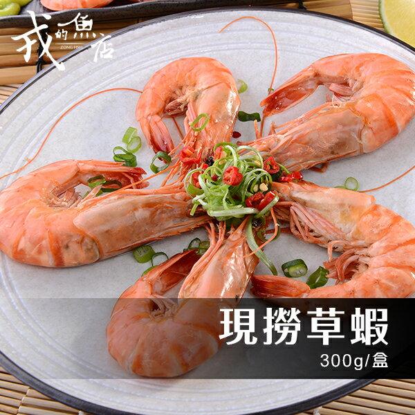~現撈草蝦 300g  盒~ 新鮮現撈活凍,戎的魚店 在地