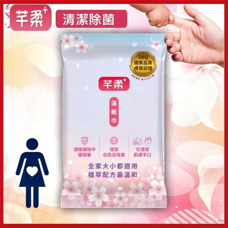 芊柔+ Plus升級版 清除腸病毒 濕紙巾10抽/包 清潔肌膚抗菌三合一【KD03006】i-style居家生活