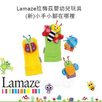 ✿蟲寶寶✿【Lamaze】拉梅茲嬰幼兒玩具-(新)小手小腳在哪裡 強化視覺聽覺發展《現+預》