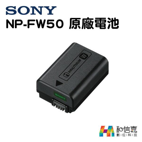 原廠電池【和信嘉】SONYNP-FW50鋰電池台灣公司貨