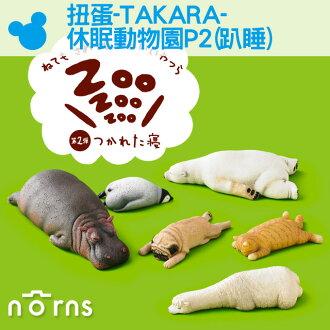 NORNS 【扭蛋-TAKARA-休眠動物園P2(趴睡)】北極熊 貓 狗 公仔 盒玩 轉蛋 隨機出貨