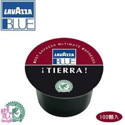 義大利【Lavazza Blue】Espresso Tierra 雙色咖啡膠囊/100顆 [78256]