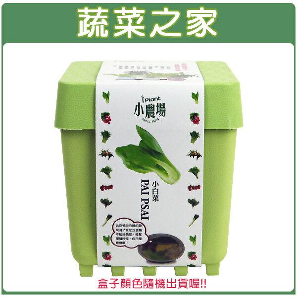 【蔬菜之家004-D14】iPlant小農場系列-小白菜