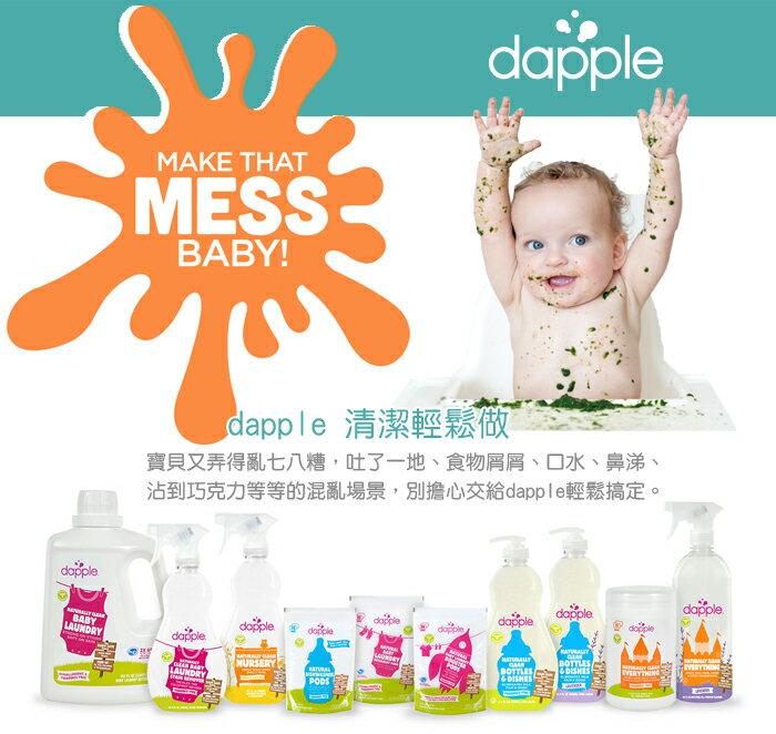 Dapple - 天然奶瓶及餐具清潔液 (無香精) 1L 補充包 1