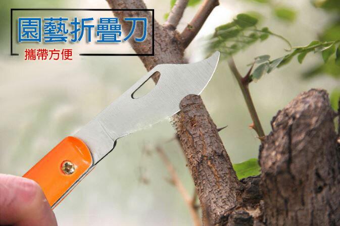 【省錢博士】多功能園藝植物折疊刀 59元