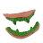 X射線【W414510】A-恐怖假牙,萬聖節 / 派對 / 尾牙 / 表演 / 角色扮演 / 暴牙 / 舞會 / 搞怪 / 怪獸 / 春酒 / 道具 / 吸血鬼 / 狼人 0