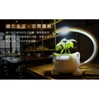Top Green 貓造型水耕栽培器LH101/療癒系/無土栽培/香草盆栽/LED植物燈/室內植栽/