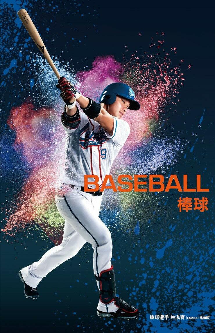 【登瑞體育】MIZUNO 2017上半年度目錄商品訂購 -棒壘類型