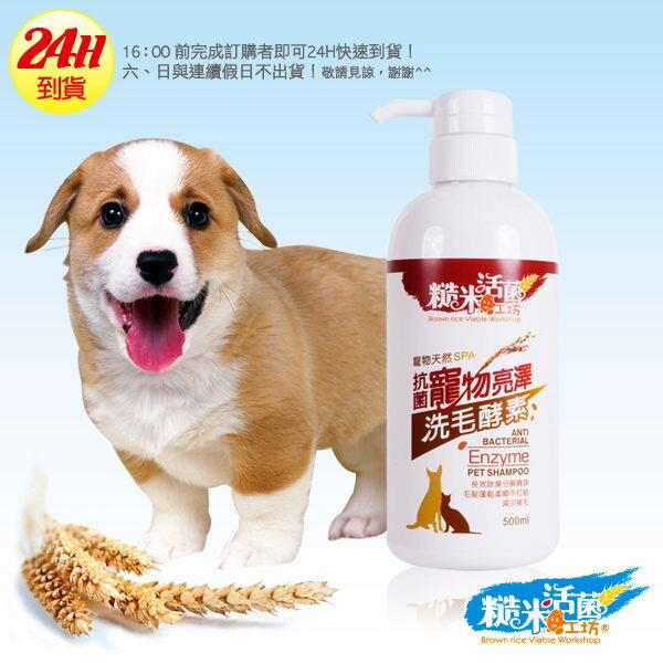 糙米活菌抗菌寵物亮澤洗毛酵素(500ml) 狗狗貓貓都適用 長效除臭亮澤、皮膚病適用 天然寵物沐浴乳