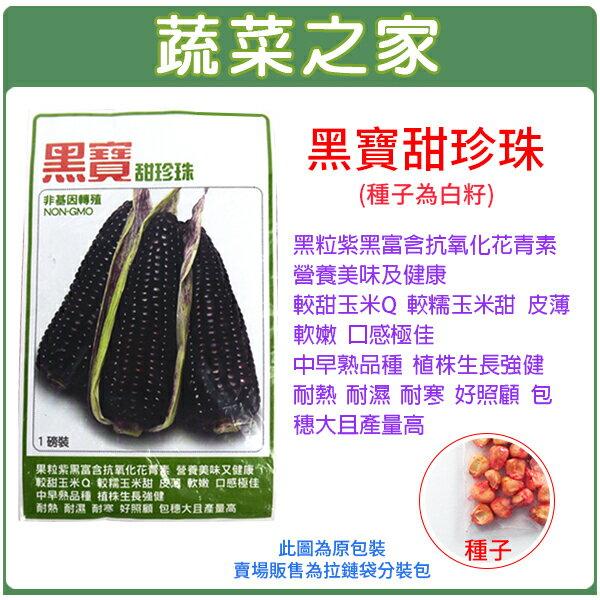【蔬菜之家】G26.黑寶甜珍珠糯玉米種子20顆