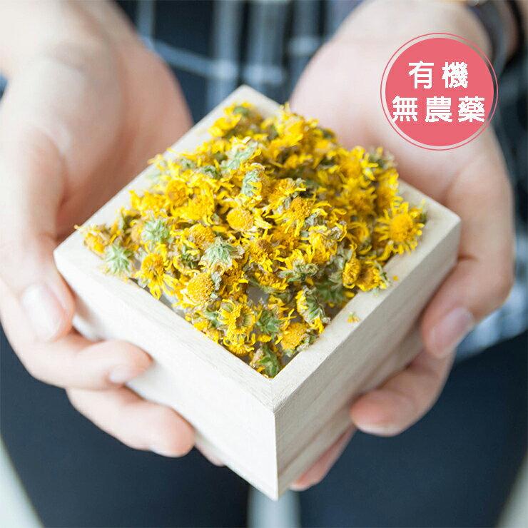 滿堂菊花茶★天然有機栽培菊花
