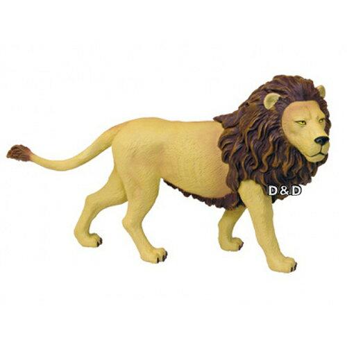 《4DPUZZLE》獅子(盒裝)