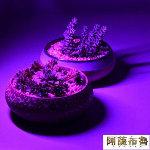 植物燈 USB led多肉紅藍燈 室內仿太陽光補光燈 全光譜 花卉 植物生長燈  雙十二特惠 聖誕節交換禮物