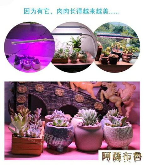 植物燈 宸華LED植物補光燈全光譜生長燈花卉綠植多肉盆景桌面夾子補光燈  雙十二特惠 聖誕節交換禮物