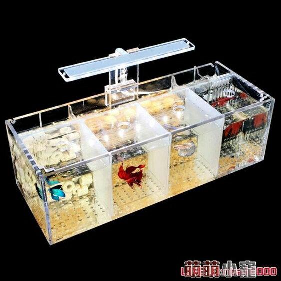 水族箱斗魚缸孔雀魚繁殖孵化隔離盒亞克力專用小組排缸活體桌面生態創意 萌萌小寵