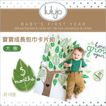 ✿蟲寶寶✿【加拿大Lulujo】風靡歐美媽咪曬寶貝必備~100%純棉寶寶成長包巾卡片組-大樹